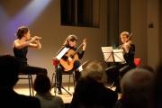Concert The Netherlands